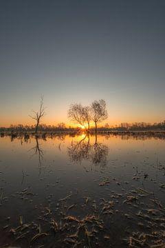 Sonnenaufgang am See von Moetwil en van Dijk - Fotografie