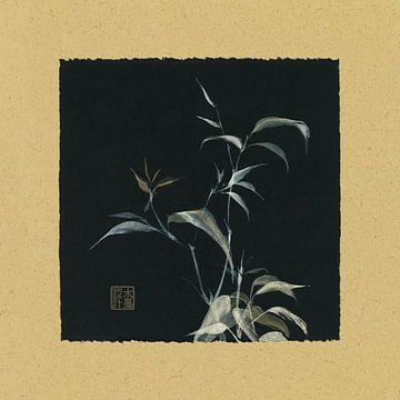 Bamboo I, Chris Paschke von Wild Apple