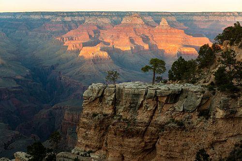 Grand Canyon National Park von Wim Slootweg