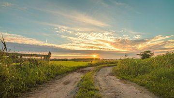 Landelijk Hek 03 Leekstermeergebied van R Smallenbroek