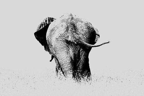 Der Elefant bläst die Geschichte aus