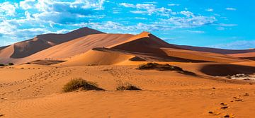De rode duinen van de Sossusvlei in de ochtendzon, Namibië van Rietje Bulthuis