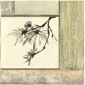 Essenz von Chrysanthemum, Chris Paschke von Wild Apple