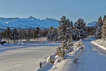 Norwegen im Winter. von Michael Schreier
