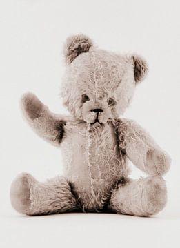 Vintage teddybeer van Tesstbeeld Fotografie