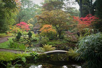Japanse Tuin  van Monique Hassink
