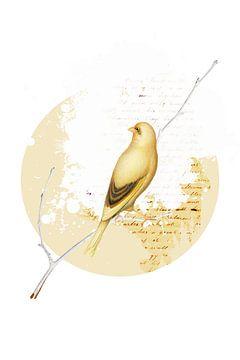 The Yellow Bird sur Marja van den Hurk