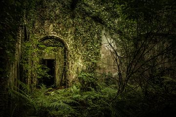 Castle Saunderson von Sebastiaan Hollaar