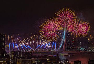 Nationaal vuurwerk in Rotterdam van Arisca van 't Hof