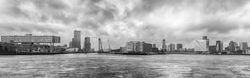 Skyline rotterdam zwart wit / black & white van Danny van Vessem