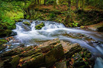 Waterval in de Harz van Martin Wasilewski