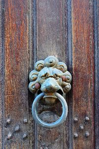Voordeur met leeuwenkop. van Marian Klerx