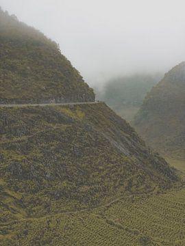 Am Rande des Zusammenbruchs in Vietnam, Asien von Danny Vermeulen