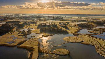 Ochtendzon boven het met rijp bedekte landschap. van Menno Schaefer