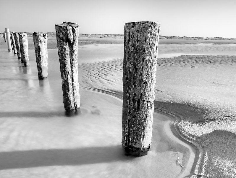 Strandhölzer von Kirsten Warner