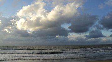 Strand von Thor Lohman