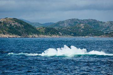 Blick auf den Lyngdalfjord in Norwegen von Rico Ködder