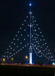 Gerbrandytoren grootste kerstboom van