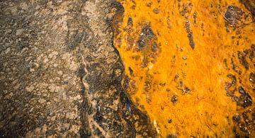 Yellowstone US von Rutger-Jan Cleiren