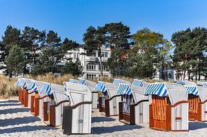 weiß-blau-braune Strandkörbe in Binz, Rügen