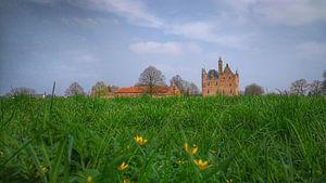 Voorjaar bij  kasteel Doornenburg/spring at Doornenburg Castle  /Früling bei Schloss Doornenburg van