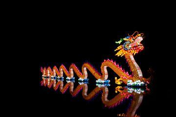 China light festival Rotterdam: de Draak sur noeky1980 photography