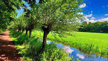 Fahrradweg entlang von Bäumen mit Graben von Digital Art Nederland