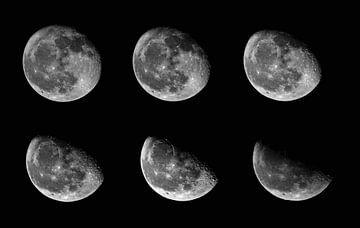Mondphasen von Julia Schellig