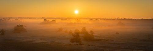 Zonsopkomst in Kootwijkerzand - Panorama van Edwin Mooijaart