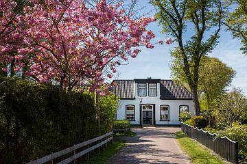 Dorfblick Nes, Ameland (NL) von
