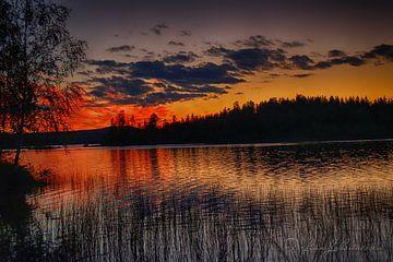 Mitternacht im schwedischen Lappland 1 von Torfinn Johannessen