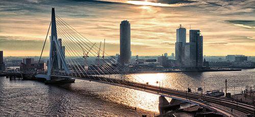 Rotterdam horizon le matin (Paysage)