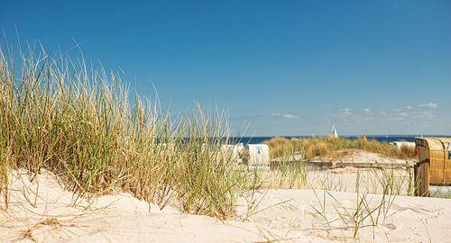 Beach overlooking the Baltic Sea van