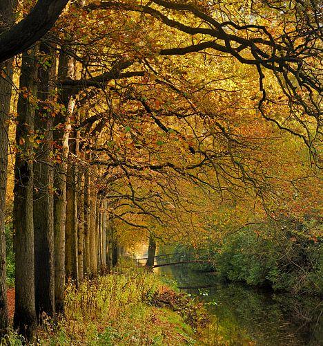 Brug naar de Herfst van