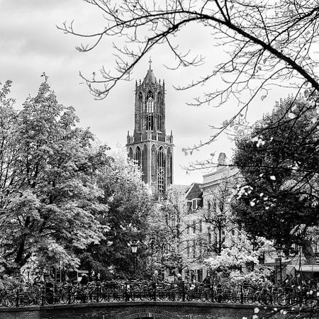 De Dom van Utrecht gezien vanaf de Oudegracht in het vierkant