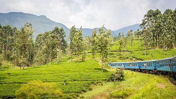 Sri Lanka Blue Train von Leon van der Velden