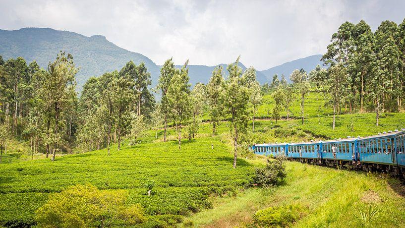 Sri Lanka Blue Train van Leon van der Velden