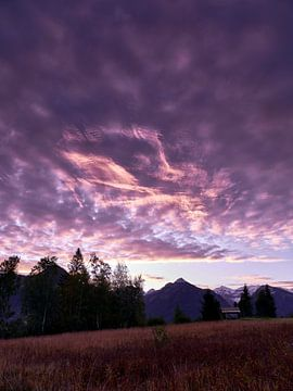 Violette zonsopgang van Max Schiefele