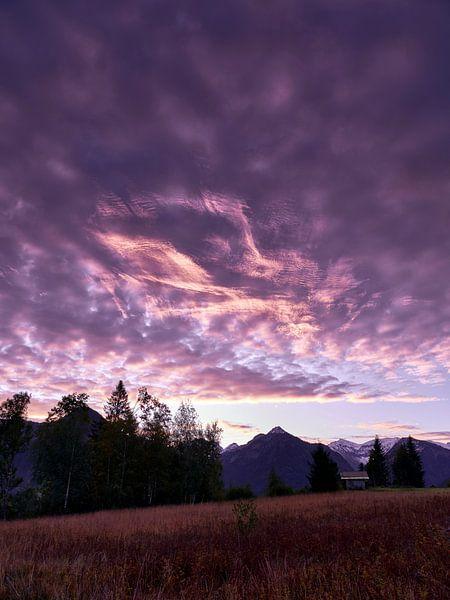 Violet sunrise von Max Schiefele