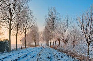 Winterlandschap in Brabant von Paula van der Horst