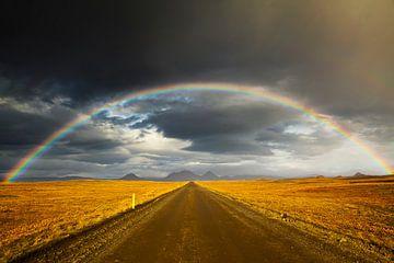 Regenboog in het binnenland van IJsland van Chris Stenger