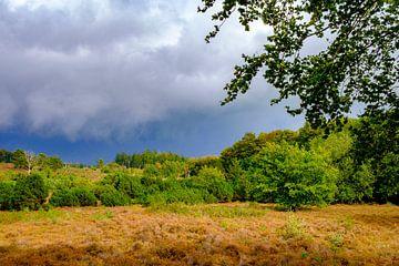 Sturmwolken über einer Heide und einem Wald auf dem Lemelerberg von Sjoerd van der Wal