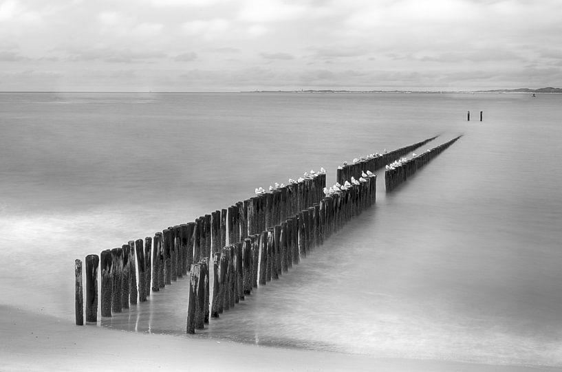 Strand in Zeeland in zwart-wit van Mark Bolijn