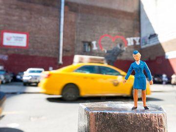Jet in New York von Sandra Perquin