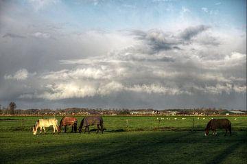 Wolkenparaplu van Mike Bing