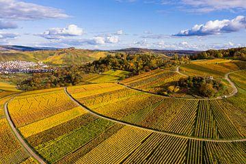 Wijngaarden in Weinstadt van Werner Dieterich
