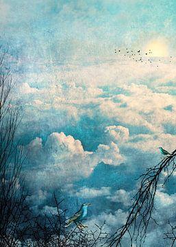 HEAVENLY BIRDS III-B3 von Pia Schneider