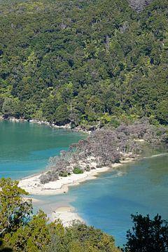 Bark Bay zandbank in het Abel Tasman Nationaal Park van Nieuw Zeeland van