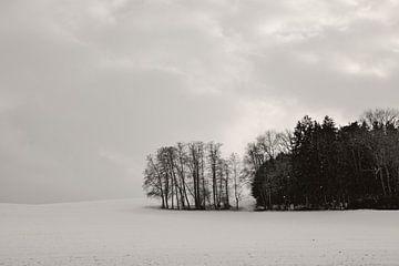 Sleepy Winter Landscape von Lena Weisbek