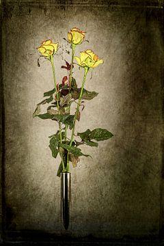 Gele rozen van Henny Verbeek